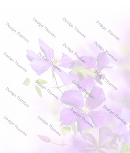 purple-flowers-with-opaque-white-bg